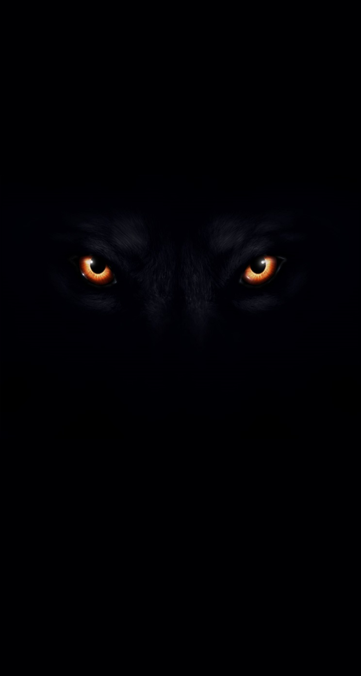 pics photos black wolf backgrounds